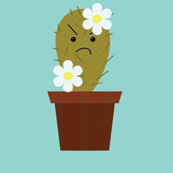 Mad Cactus